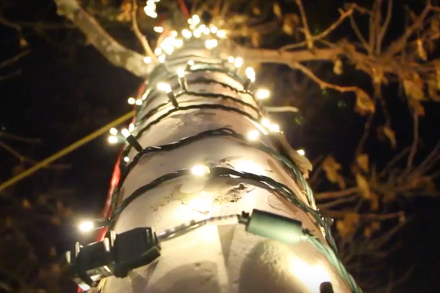 Scene from Tech Twinkles, an annual lighting ceremony at MIT.