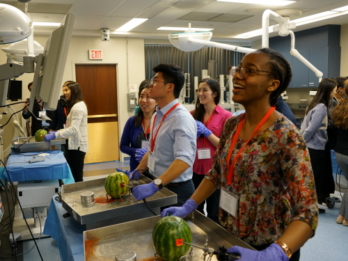 Students practice arthroscopic surgery on a watermelon in clinical simulations lab.
